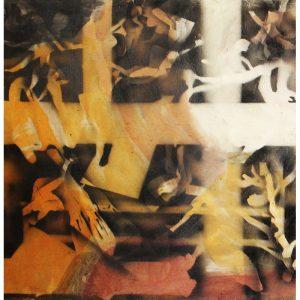 IV D-pictura-marius-burhan