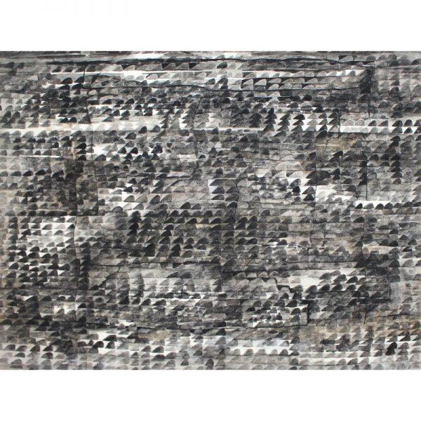 Pamant arat-pictura-viorica-iacob