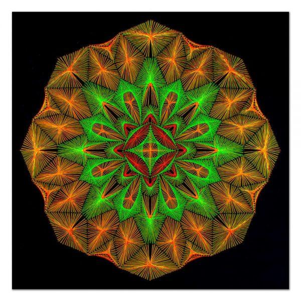 Octagonal star-arta-decorativa-fluo-webs