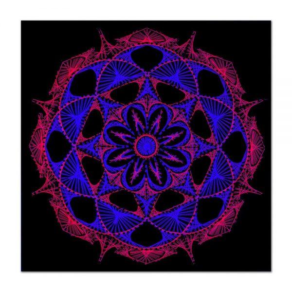 Flower power 2-arta-decorativa-fluo-webs
