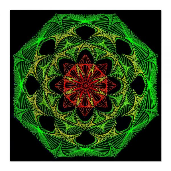 Flower power 1-arta-decorativa-fluo-webs